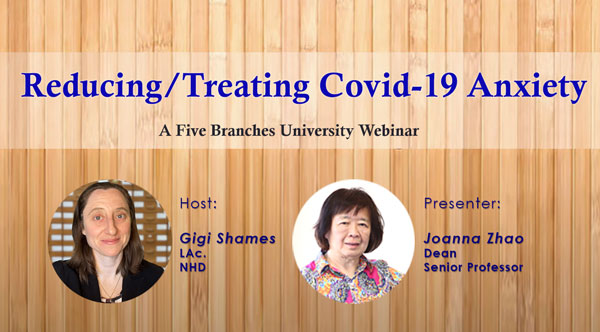 Reducing Covid-19 Anxiety, Free to the Public Webinar Series