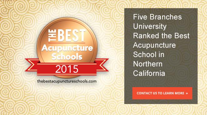 homepage_2015-best_acupuncture_schools_5_background