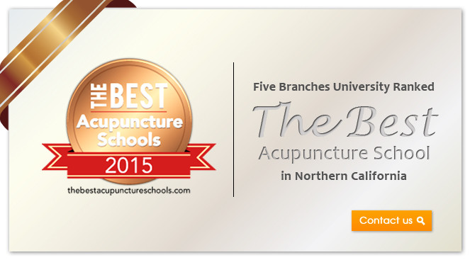 Five Branches University