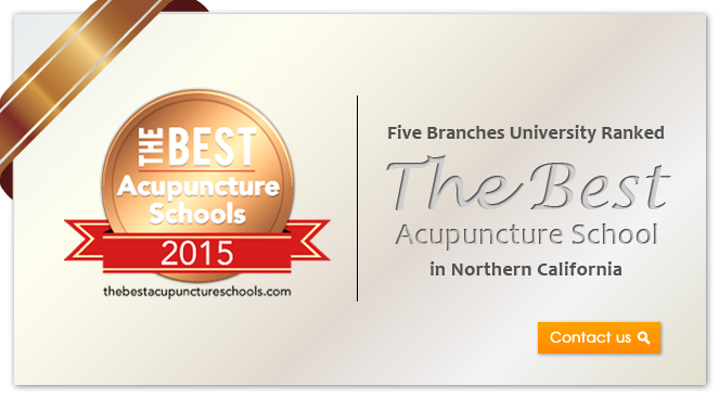 Five Branches, the Best Acupuncture School 2015